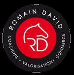 Écurie Romain David